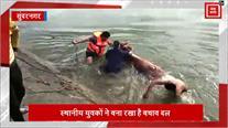 Sundernagar में युवकों ने डूबते बैल को बचाया