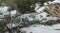 Live: हिमाचल में फिर बर्फबारी,लोगों की बढ़ी दिक्कतें