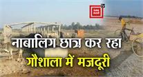 योगी राज में नाबालिग छात्र कर रहा गौशाला में मजदूरी, VIDEO VIRAL