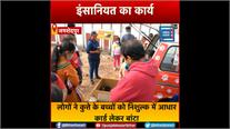 जमशेदपुर में दिखा इंसानियत का कार्य,कुछ लोगों ने लावारिश कुत्ते के बच्चे को जीवन देने का किया प्रयास