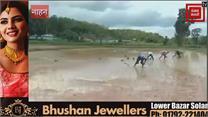 सिरमौर में धान की रोपाई जोरों पर, मजदूरों और डीजल की कीमतों ने किया परेशान