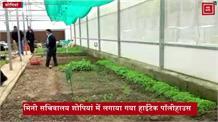 कृषि विभाग ने शोपियां में लगाया हाईटेक पॉलीहाउस, मिल रही उच्च गुणवत्ता वाली सब्जियों की पौध