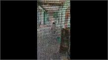 स्वतंत्रता सेनानी संग उसकी बहू की दरिंदगी हो रही वायरल