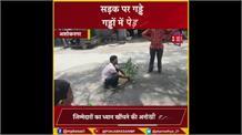 इसे कहते हैं आज के जमाने की गांधीगिरी ! सड़कों में हो गए थे गड्ढे, तो लोगों ने लगा दिए पेड़...