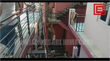 Live: कंडाघाट में पंचायत कार्यालय के कब्जे को दिनभर चला हाईप्रोफाइल ड्रामा