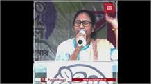 बीजेपी के 4000 से ज्यादा वर्करों ने सिर मुंडाकर थामा TMC का दामन
