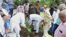BJP MLA राजेश नागर ने सेक्टर-28 में सुनी लोगों की समस्याएं, पौधारोपण के बाद जनता को सौंपी जिम्मेदारी