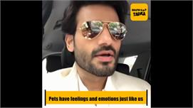 Pets have feelings and emotions just...