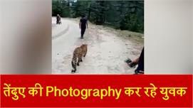South kashmir में Leopard की...