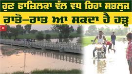 Fazilka के गांवों में Flood, लगातार बढ़...