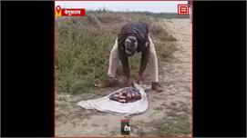 #खोजी कुत्ते की मदद से Police ने किया...
