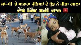 Stray dogs ने माँ -बेटी पर किया हमला,...