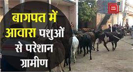 Baghpat: भड़का ग्रामीणों का गुस्सा,...