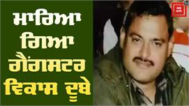 Police Encounter'ਚ ਮਾਰਿਆ ਗਿਆ Vikas...
