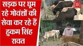Injured Animals : टिहरी के Hukam Singh...