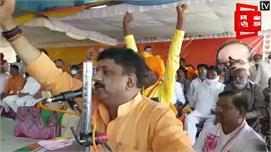 चुनाव प्रभारी अलोक शर्मा ने बीजेपी पर...