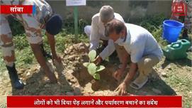 आईटीबीपी जवानों ने 1500 पेड़ लगाकर...