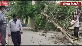 शिमला में बीच बाज़ार बारिश से गिरा...