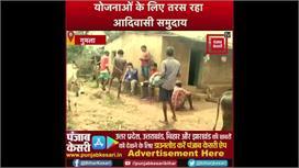 बदहाली में जी रहे आदिवासी समुदाय,...