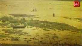 पंचकूलाः उफनती घग्गर नदी में फंस गए दो...