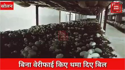 बिजली विभाग का बड़ा कारनामा:सोलन में मशरूम उत्पादक को थमा दिया 20 करोड़ का बिल