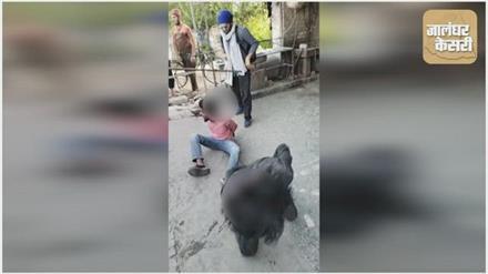 महिला का पर्स छीन भाग रहे लुटेरों की लोगो ने जम कर की धुनाई , देखे वीडियो
